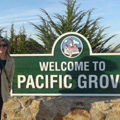 Pacific Groove