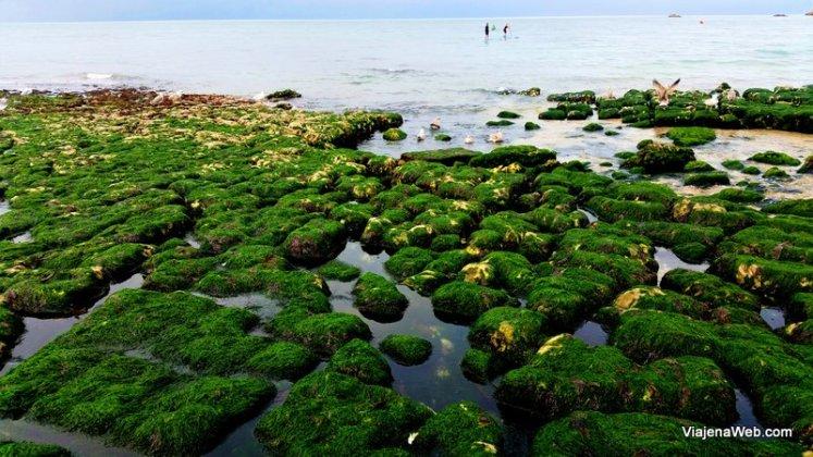 Praia de Galet na maré Baixa