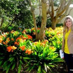 Jardins de Groot Constancia - Vinícola perto de Cape Town na Africa do Sul