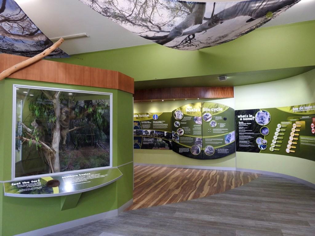 Centro de conservación de koalas