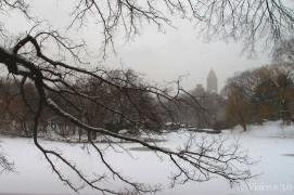 nueva-york.nevado-(3)