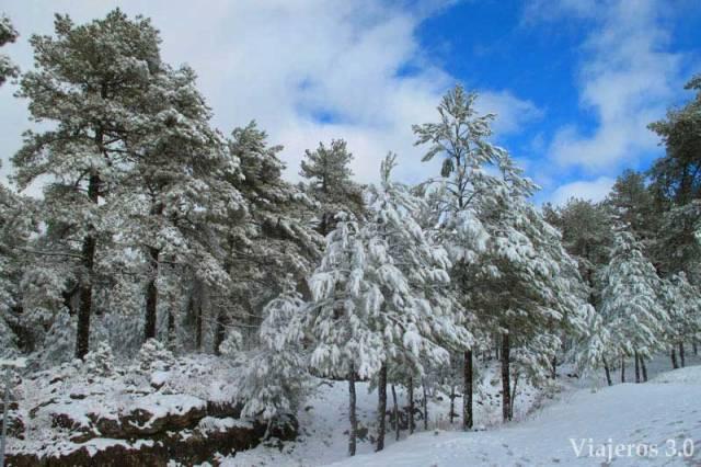 paisaje nevado en la Ciudad Encantada de Cuenca