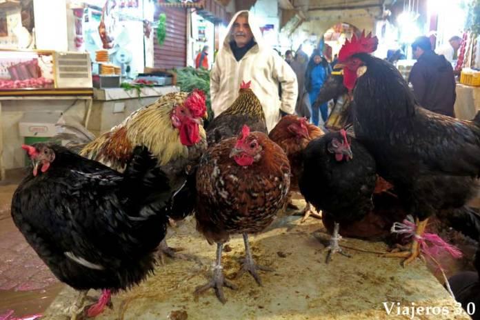 Mercado de alimentos y zocos que ver en Fez