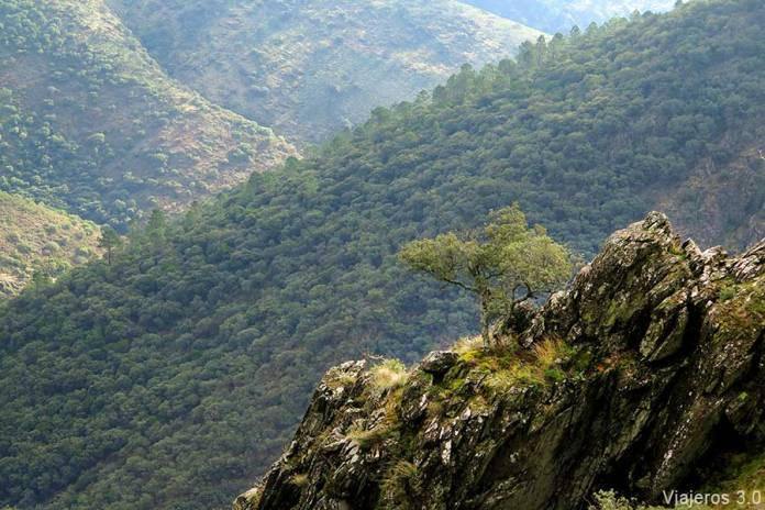 Sierra de Gata, valles y naturaleza