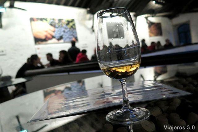bodegas y vino de Oporto