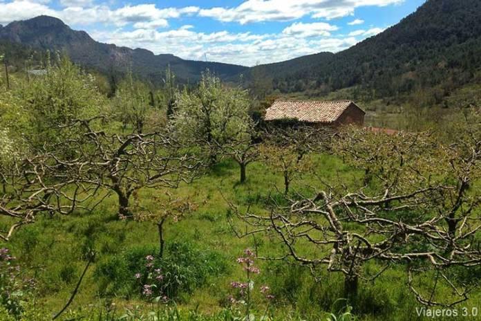 Paisajes en el Valle de Caderechas y cerezos en flor