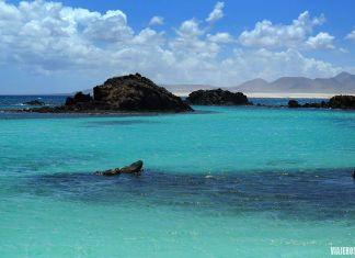 qué ver en la isla de Lobos, el Puertito