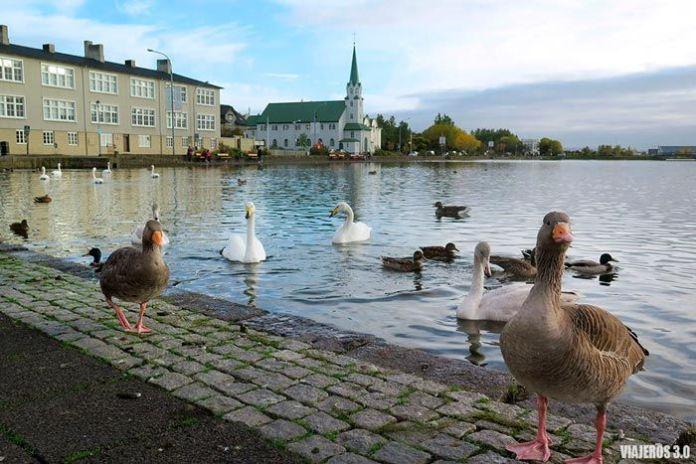 las mejores fotografías de Reikiavik en Islandia