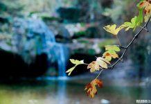Valle de Mena y las cascadas del río Hijuela en Irús