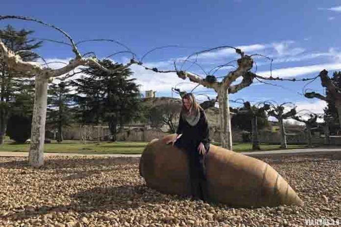 Enoturismo en la Ribera del Duero: Pasaporte a la Ribera