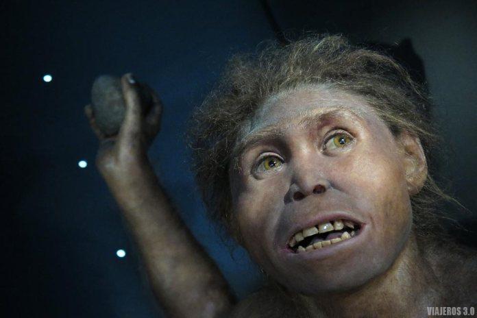 qué ver cerca de Burgos, Museo de la Evolución Humana