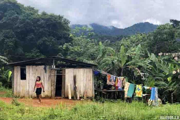 Selva en Chocó, ruta por Colombia