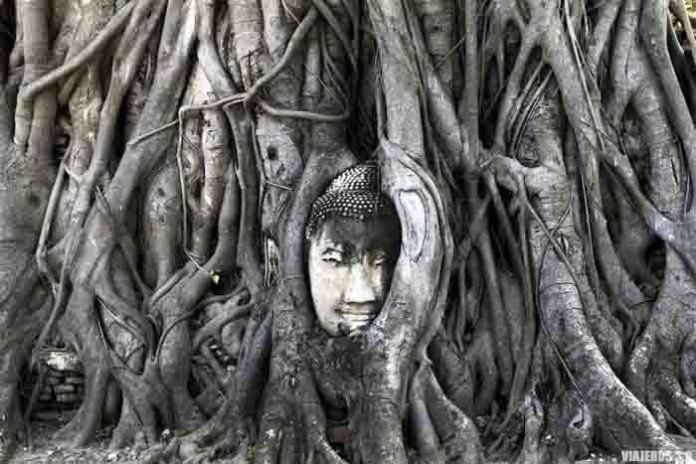 Ayutthaya, qué hacer en Bangkok en 3 días