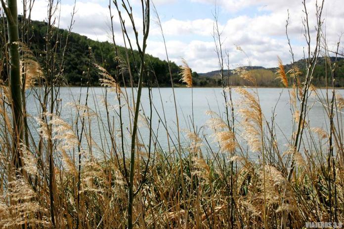 Laguna Tomilla, qué ver en las Lagunas de Ruidera