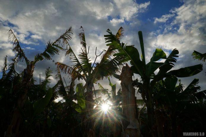 Plataneras, que ver en La Palma