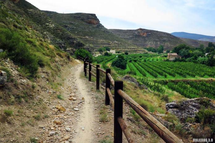 Ruta por el Camino Verde del Alhama.