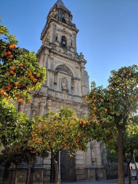 Jerez de la Frontera, qué ver en Cádiz provincia