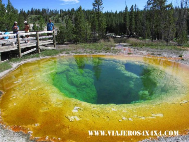 Aguas termales en Yellowstone National Park - Viajeros4x4x4