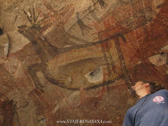 Pintura rupestre de un ciervo y un buitre sobre la cabeza de Pablo Rey