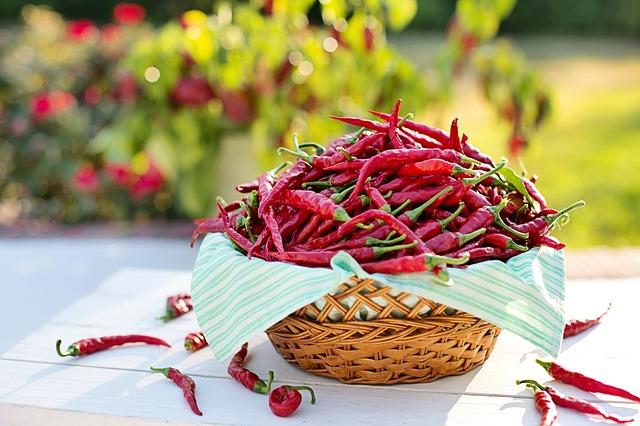 chile, cayena o ajíes