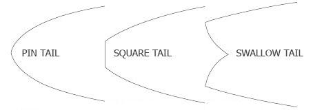 cola skimboard - pin tail