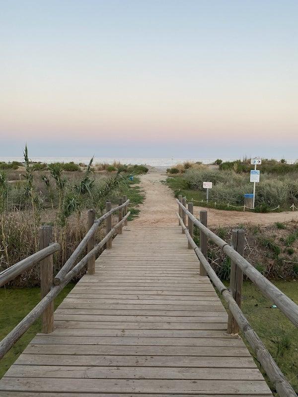 qué ver y hacer en Moncofa: dunas de la playa del MasboDu