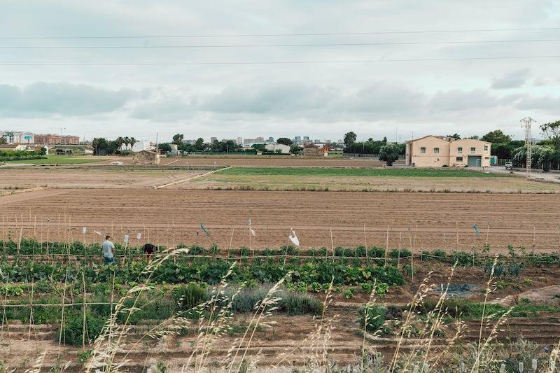 La huerta valenciana