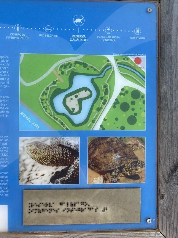 Reserva del Galápago: Qué ver y hacer en Moncofa