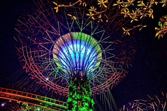 Supertree Grove Multicolor