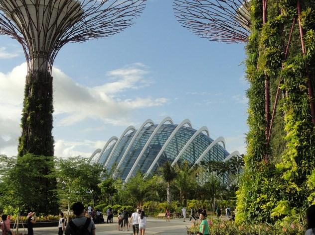 Supertrees y el invernadero