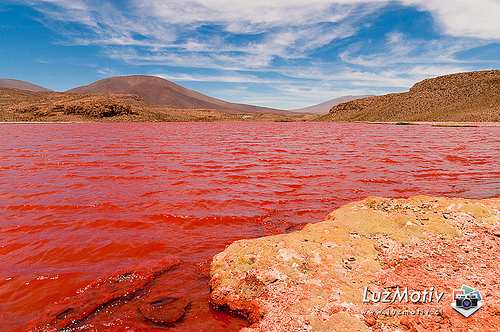 Red Lagoon of Chile