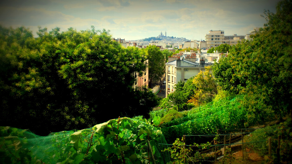"A wonder in Paris : the "" Butte Bergeyre "", with the finest view on the Sacré Coeur !"