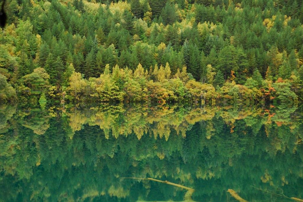 DSC_8477 Mirror Lake