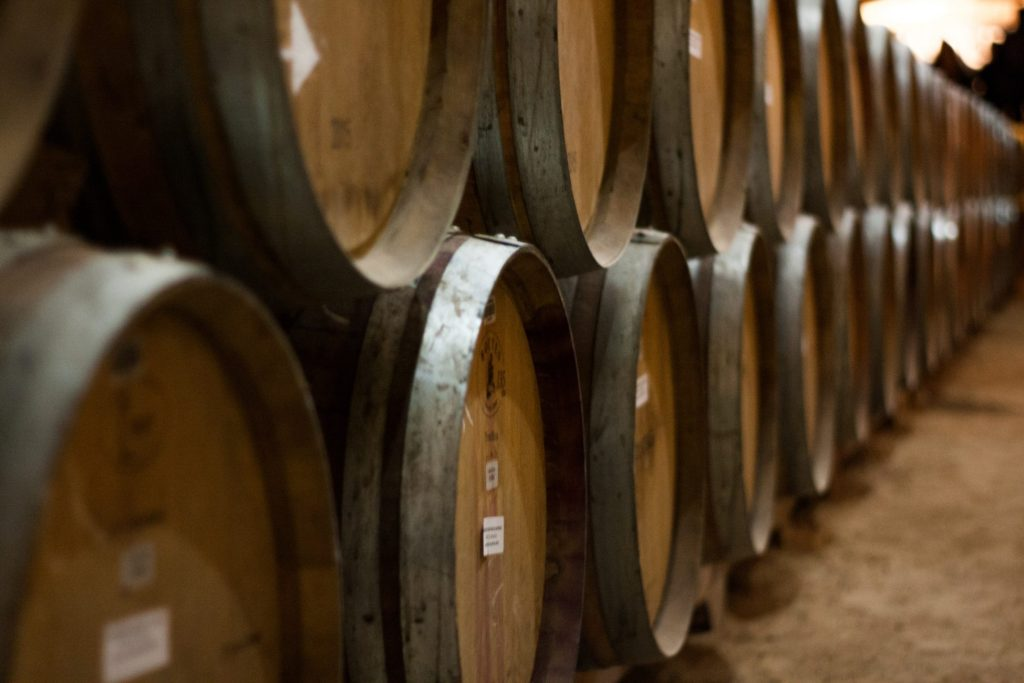 Logroño: paisajes con olor a vino 3