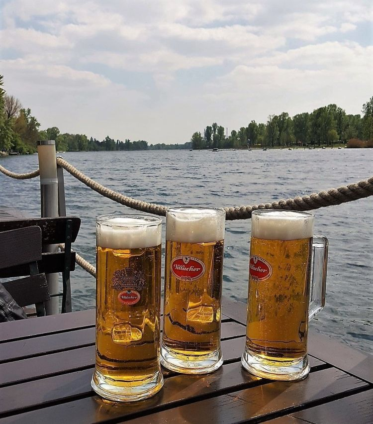 Comer y beber en Viena