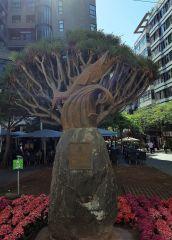 Monumento al Chicharro y Drago en Santa Cruz
