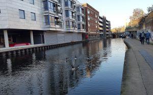 Paseo de Rengent's Canal hacia Camden