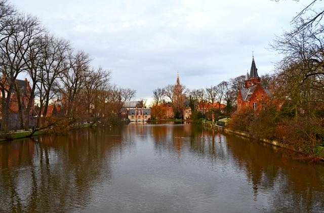 Canales lago vegetación sur Brujas