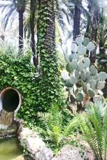 El jardi de lHort del Capella presumeix de llati