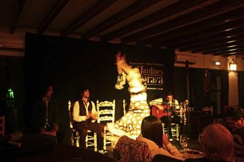 Tablao flamenco Jardines de Zoraya Albaycín Granada