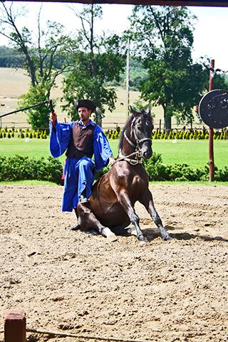 Ember jovokep alapjan lovas szepseg