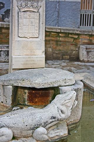Detalle escultura rana fuente Magdalena Jaén