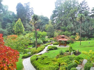 Panorámica jardín japonés coníferas pagoda camino Powerscourt Irlanda