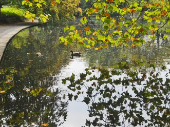Vistas lago patos hojas árboles Victorian Park St Stephens Green Dublín