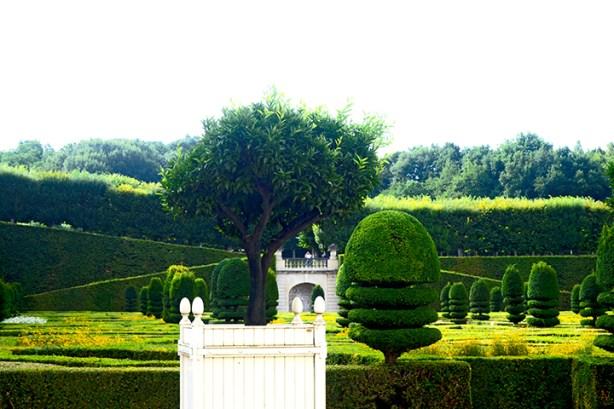 Corte jardinería formas césped Castillo de Villandry