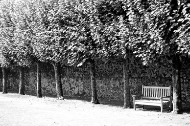 Hojas otoño banco jardines Villandry Valle del Loira