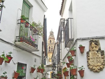 Calle Las Flores Córdoba Mezquita