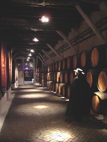 Interior bodegas capa negra Sandeman vino Oporto