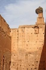 Nido cigüeña muros Palacio El Badi Marrakech