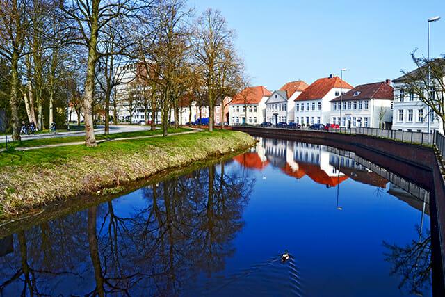 Panorámica pato navegando orillas río Hunte Oldenburg Alemania